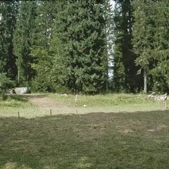 1994 Sommerlager - Sola94_200
