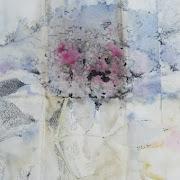 Sanbuco Cocciniglia 50x 35 cm su carta