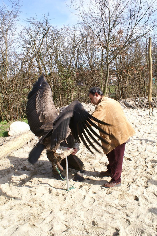 Opening Speeltuin en Roofvogelshow 17 maart 2007 - Nr_024