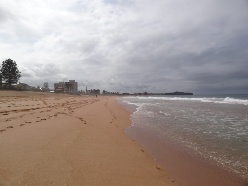 Looking South at South Narrabeen Beach