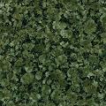BALTIC GREEN