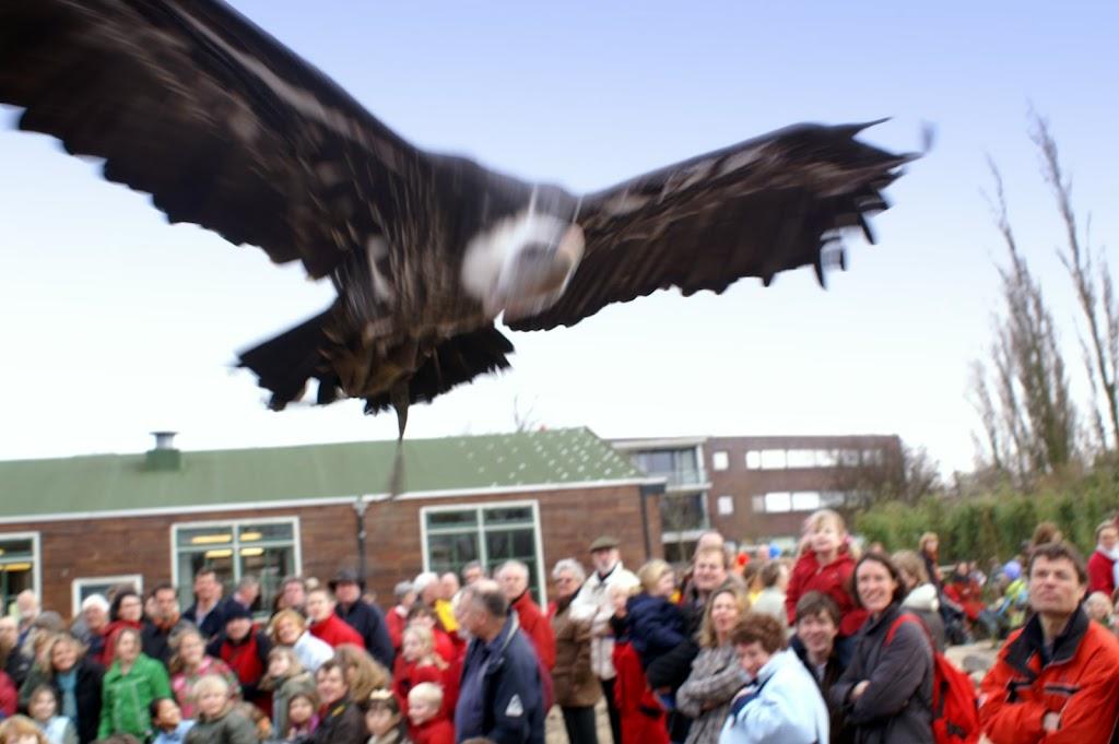 Opening Speeltuin en Roofvogelshow 17 maart 2007 - Nr_121