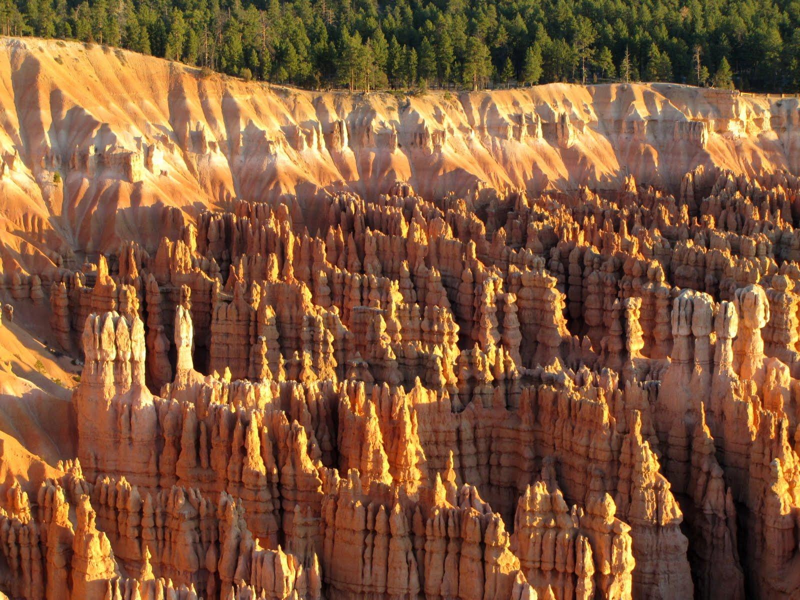 Dense Rock Column Wood