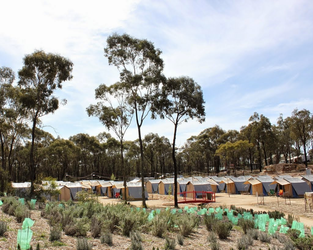 Tents at the Great Stupa of Universal Compassion, Australia, September 14, 2014. Photo by Laura Miller.