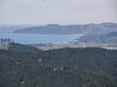 Halfway over the hill looking back towards Matarangi