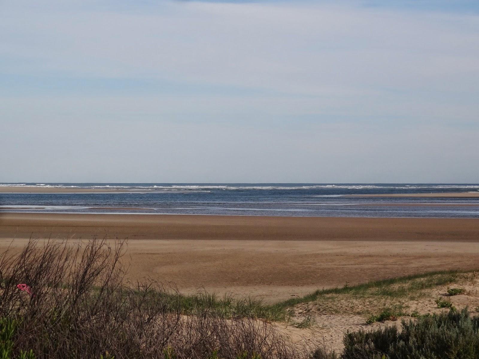 Where the Murray meets the sea from Hindmarsh Island