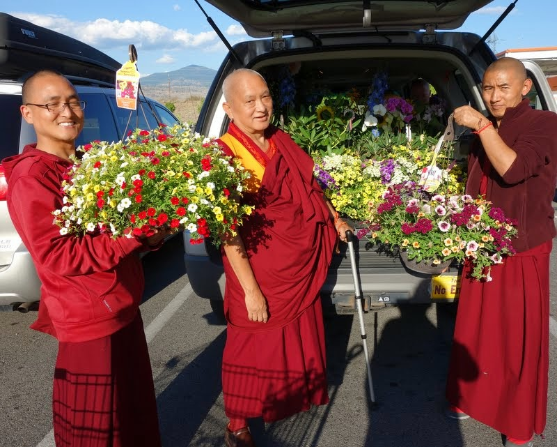 Lama Zopa Rinpoche with Vens. Sherab and Sangpo and all the flower offerings, Washington, US, July 2014. Photo by Ven. Roger Kunsang.