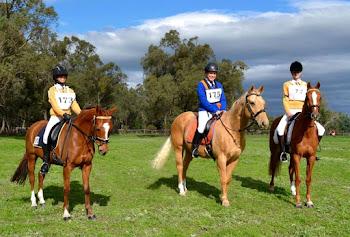 Teams HorseTrials2