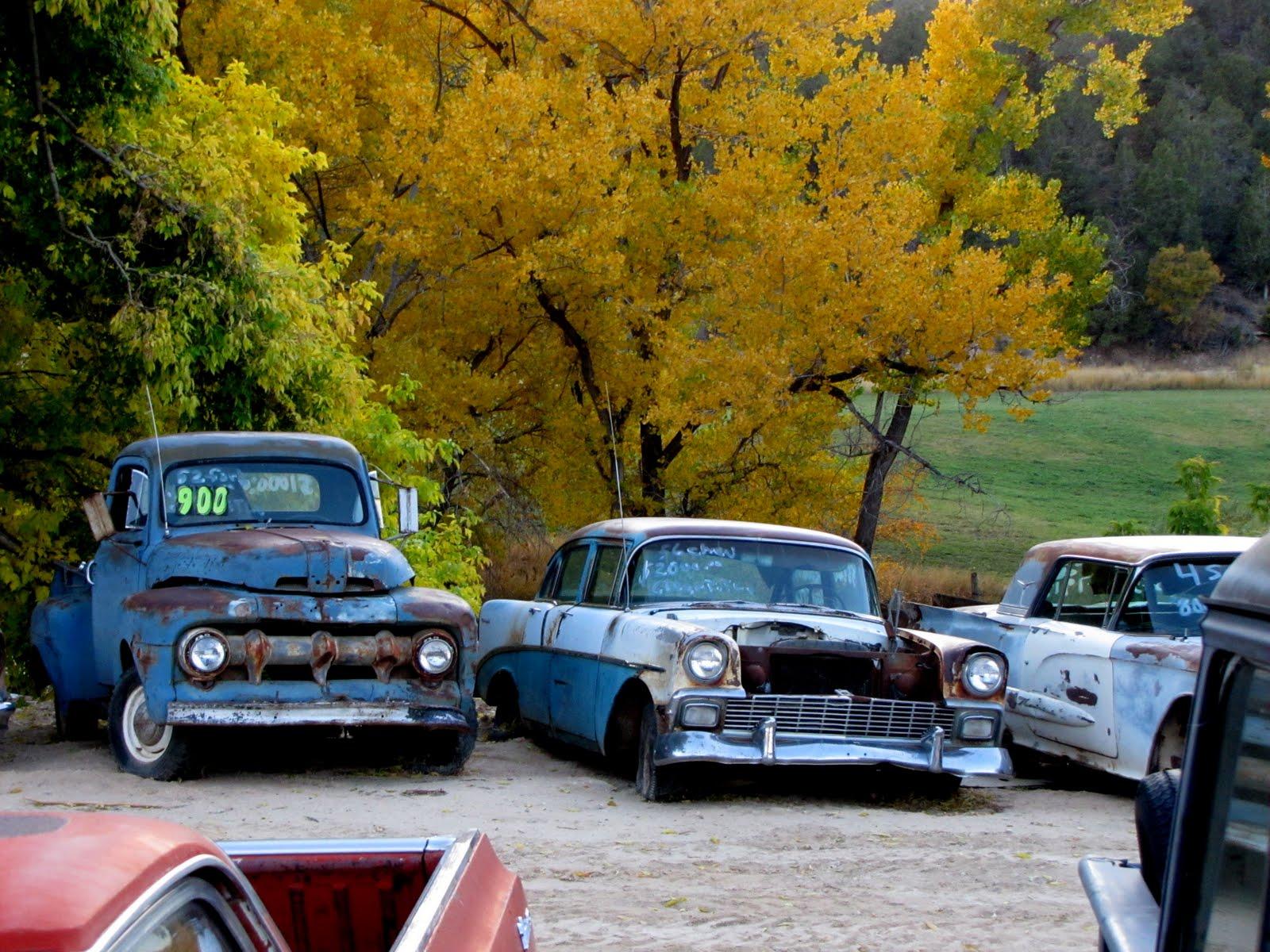 Roncstelep valahol a vadnyugaton, Utah Wrecks, somewhere in Utah, 1952 Ford F10, 1956 Chevrolet Bel Air