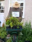 scarecrow2004 (13)