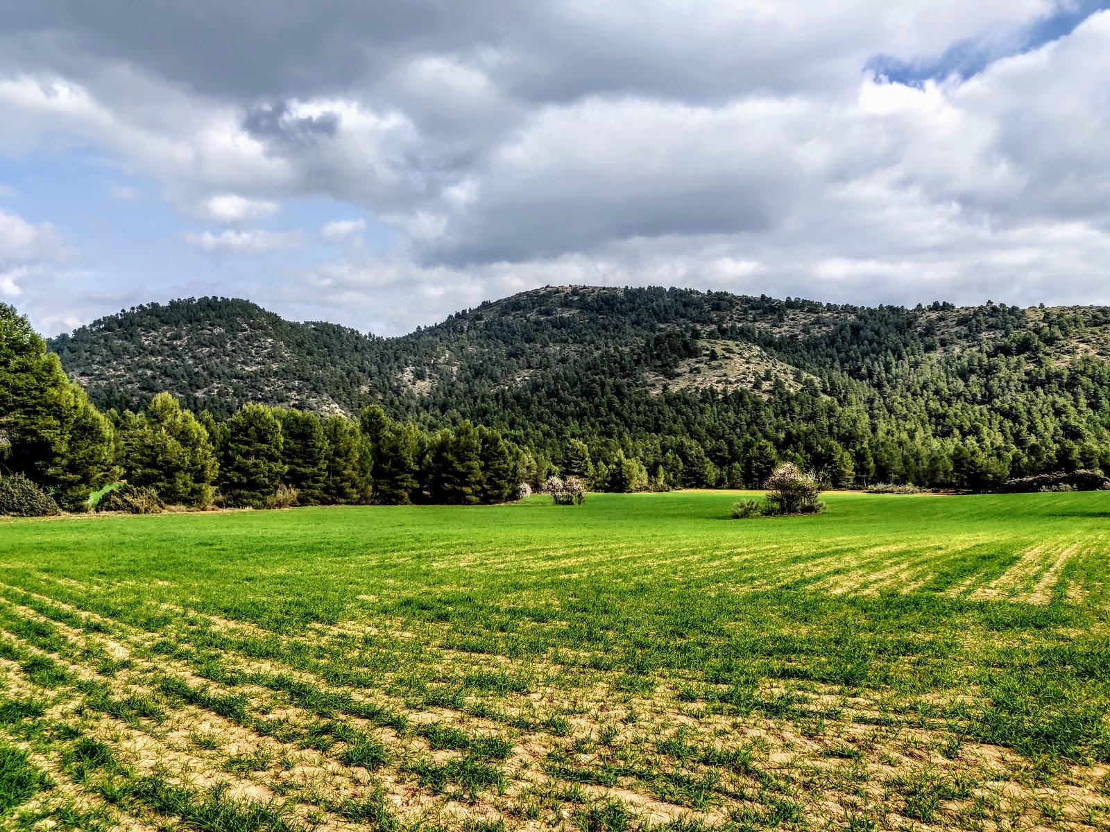 ZEPA Sierras de Burete, Lavia y Cambrón