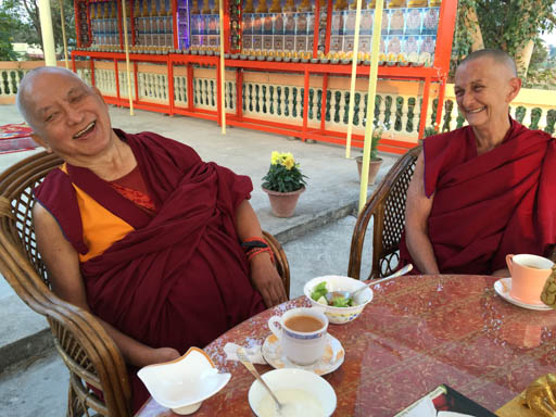 Lama Zopa Rinpoche having tea with Root Institute director Ven. Trisha Donnelly, Root Institute, India, February 2015. Photo by Ven. Roger Kunsang.
