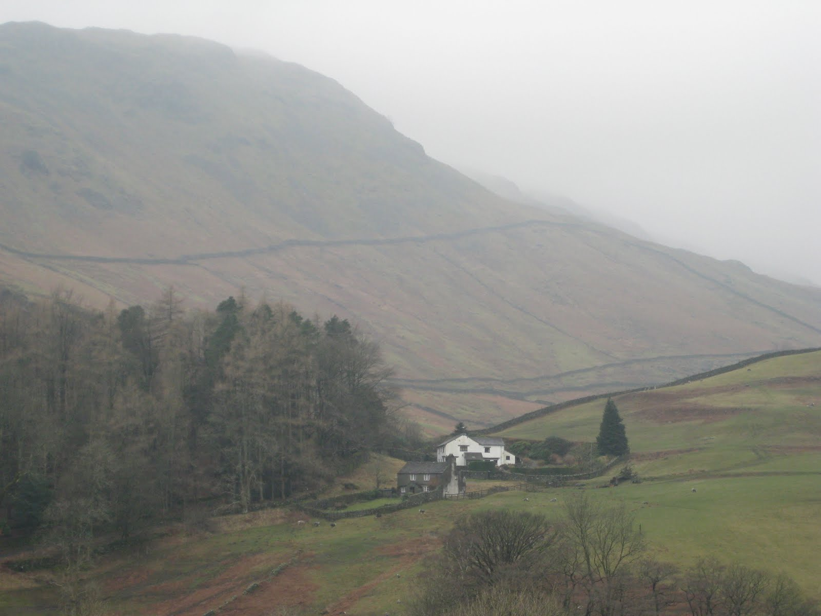 Note stone walls well up the hillside