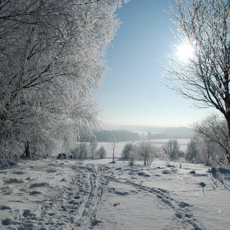 Ladovská zima 2010 - DSC_1570