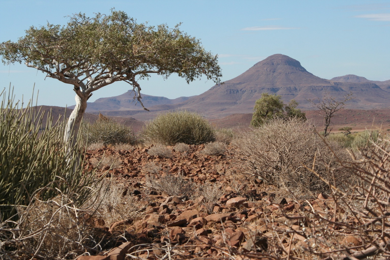 Damaraland landscape
