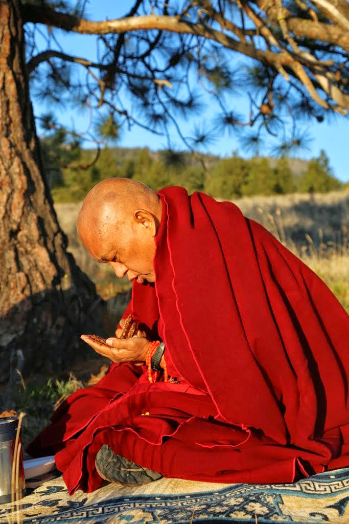 Lama Zopa Rinpoche helping ants at Buddha Amitabha Pure Land, Washington, US, April 2014. Photo by Ven. Thubten Kunsang.