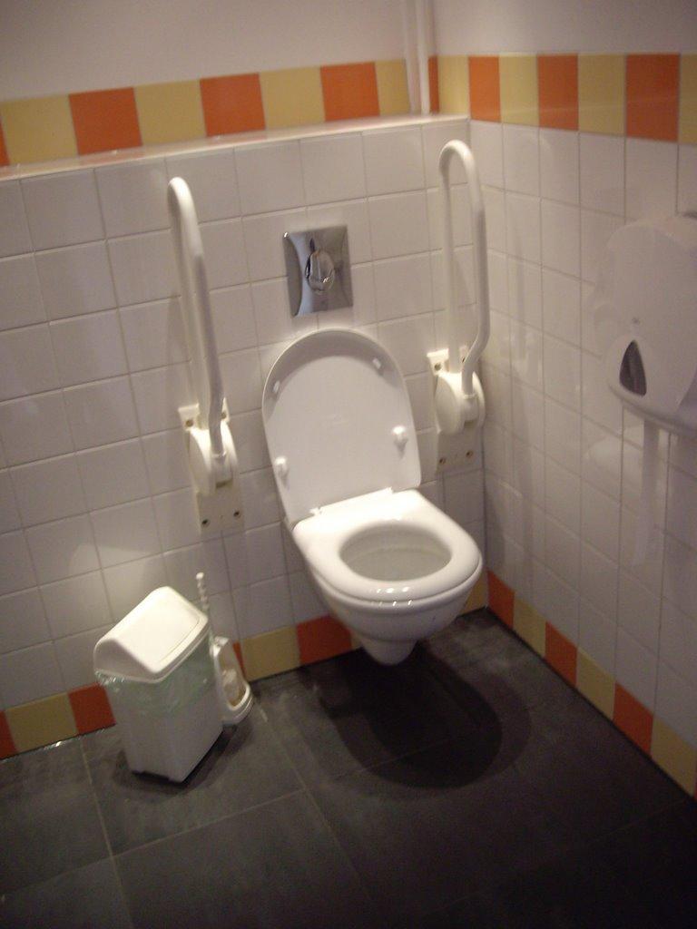 Dak en Toilet - IMGP5002