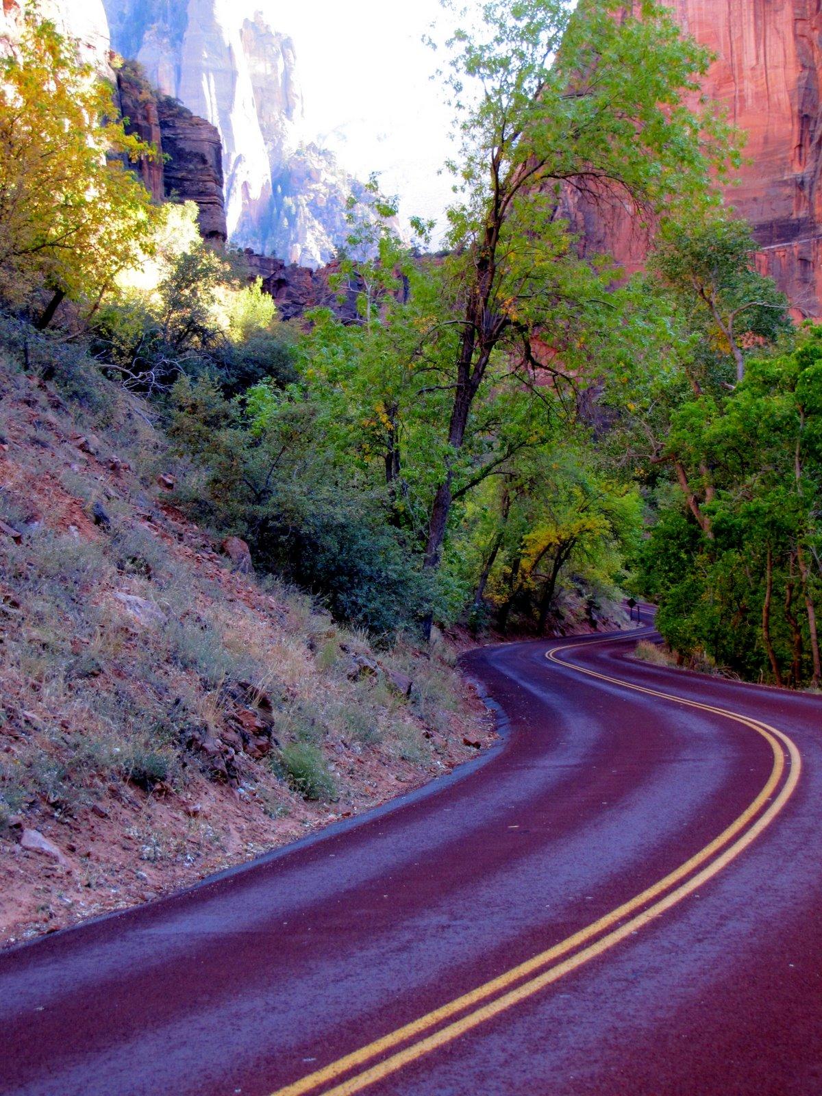 Kanyargós  Curving road