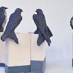 rondini 1 20x30 cm cadauna gress nero 2016 Duisponibili