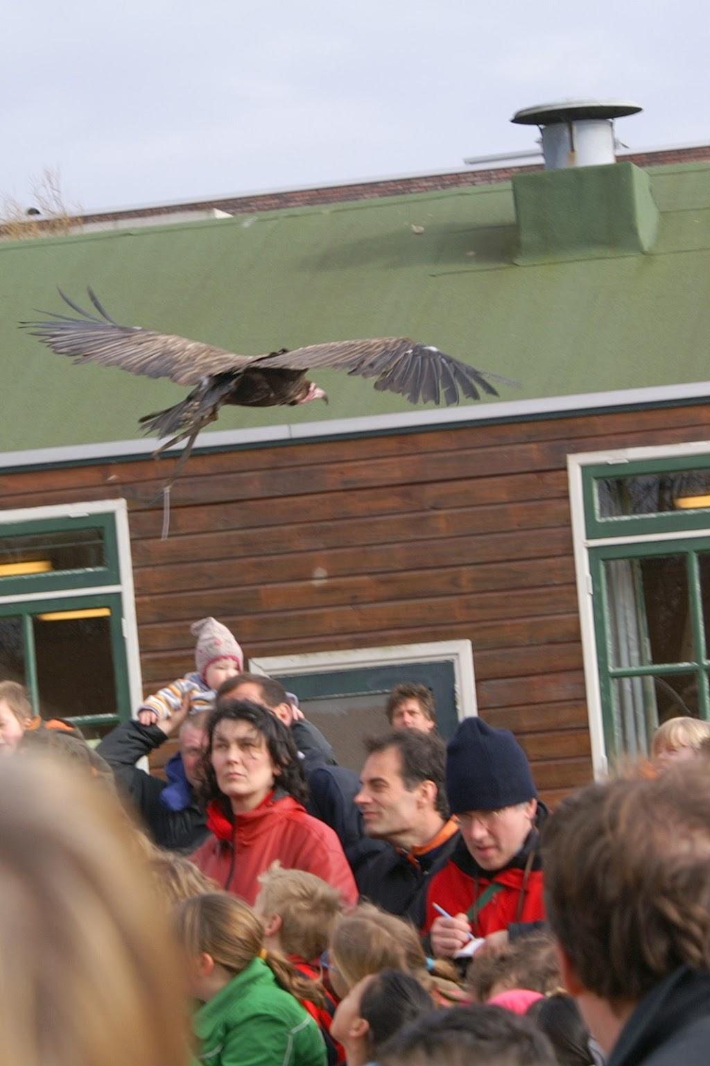 Opening Speeltuin en Roofvogelshow 17 maart 2007 - Nr_106