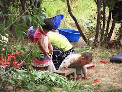 Porodica koja yaista živi u jednioj jurti