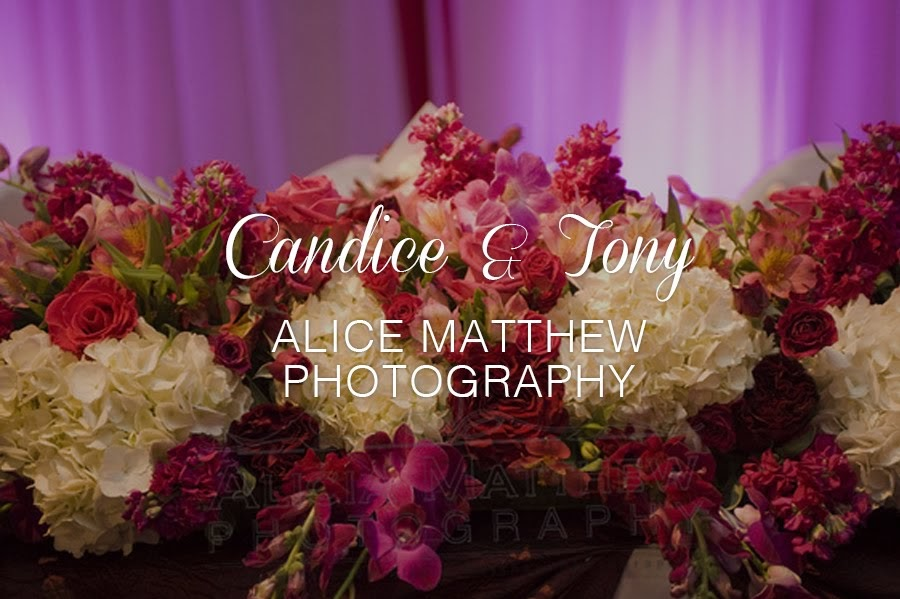 Candice & Tom by Alicia Matthew Photography