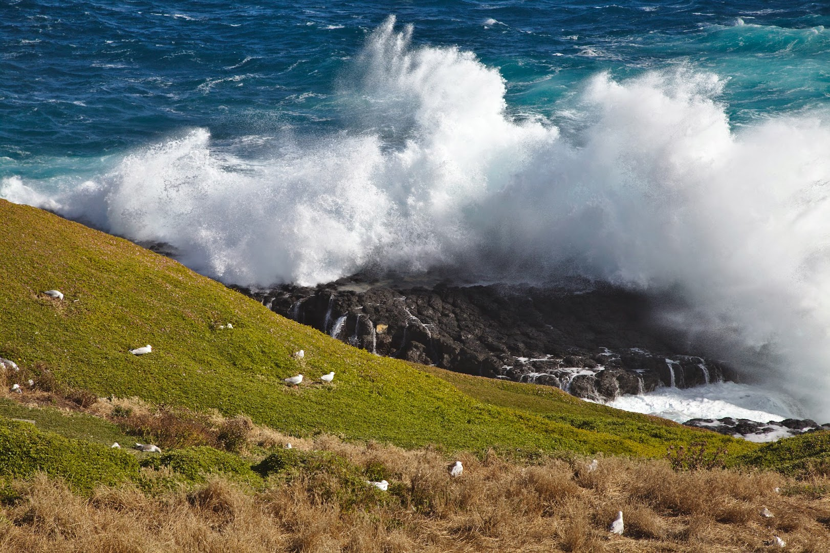 Philipp Island, south of Melbourne,  has some serious weather