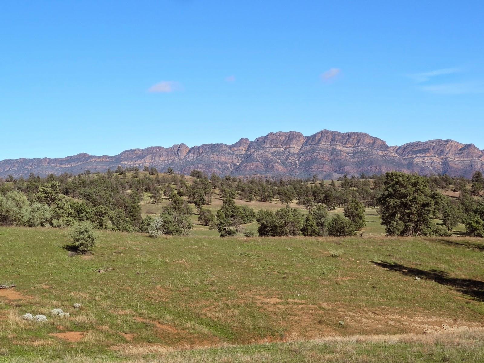 Elder Range from Moralana Scenic Drive