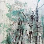 Faggeta Monti Sibillini Gennaio 2014 19 x19 cm Disponibile Available