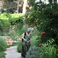 Julie in Garden (Jerusalem)
