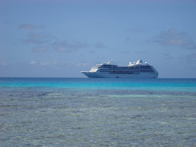 Pacific Princess from the beach