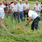 2010-05-29 Ormaiztegi Taldekako sega-txapelketa