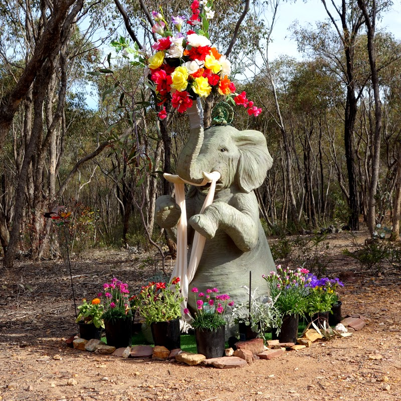 Elephant making offerings to Great Stupa of Universal Compassion, Bendigo, Australia, October 2014. Photo by Ven. Roger Kunsang. While staying at Thubten Shedrup Ling Monastery, Lama Zopa Rinpoche gave instructions for the large elephant statues in the bush near the monastery and Great Stupa to have offerings.