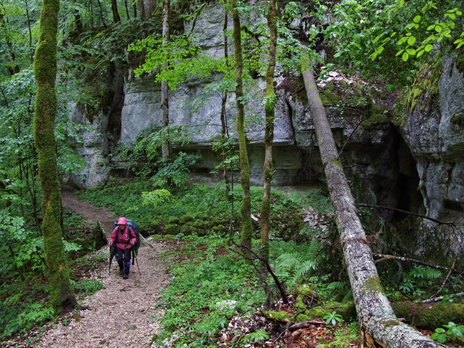 Doubs rive Suisse Combe à la Greffiere