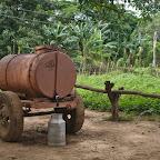 Kvass in Cuba? No, just milk