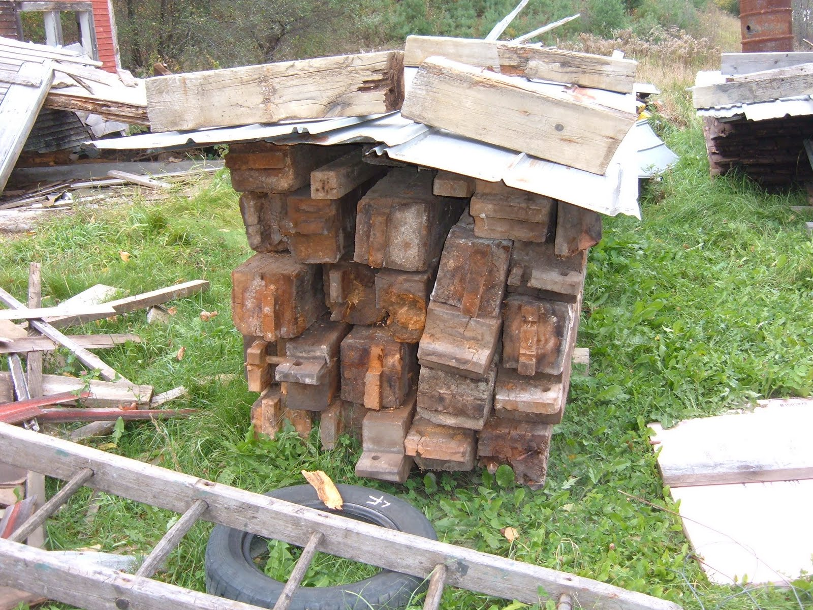 We first began this project by pawing through piles of inadequately labeled piles of rotten timber.