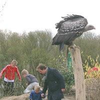Opening Speeltuin en Roofvogelshow 17 maart 2007 - Nr_122