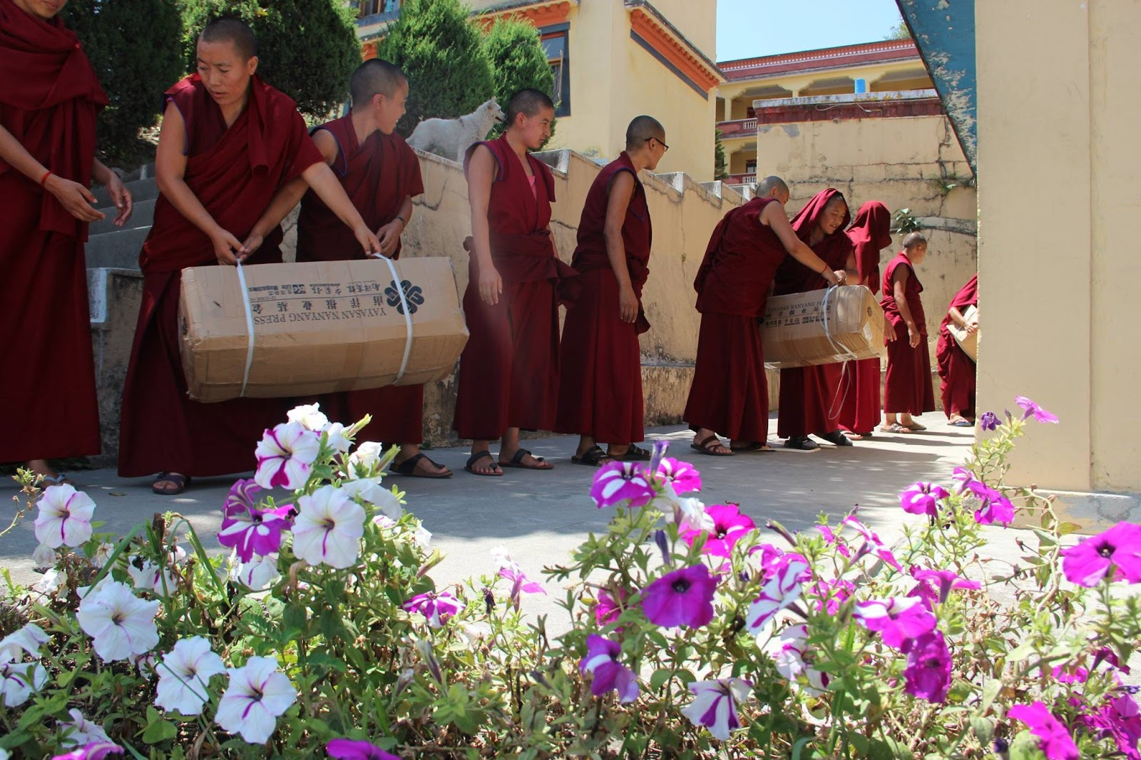 Kopan monks and nuns worked with several charities and individuals to distribute much needed aid to villagers in upper Tsum.