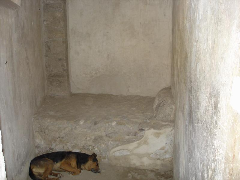 Hardly a 5 star bed. Also a local stray dog having a sleep