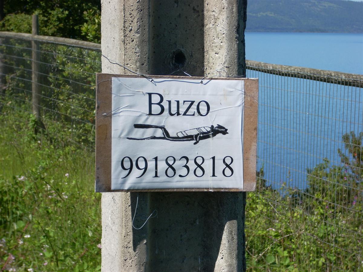 Random sign on side of road