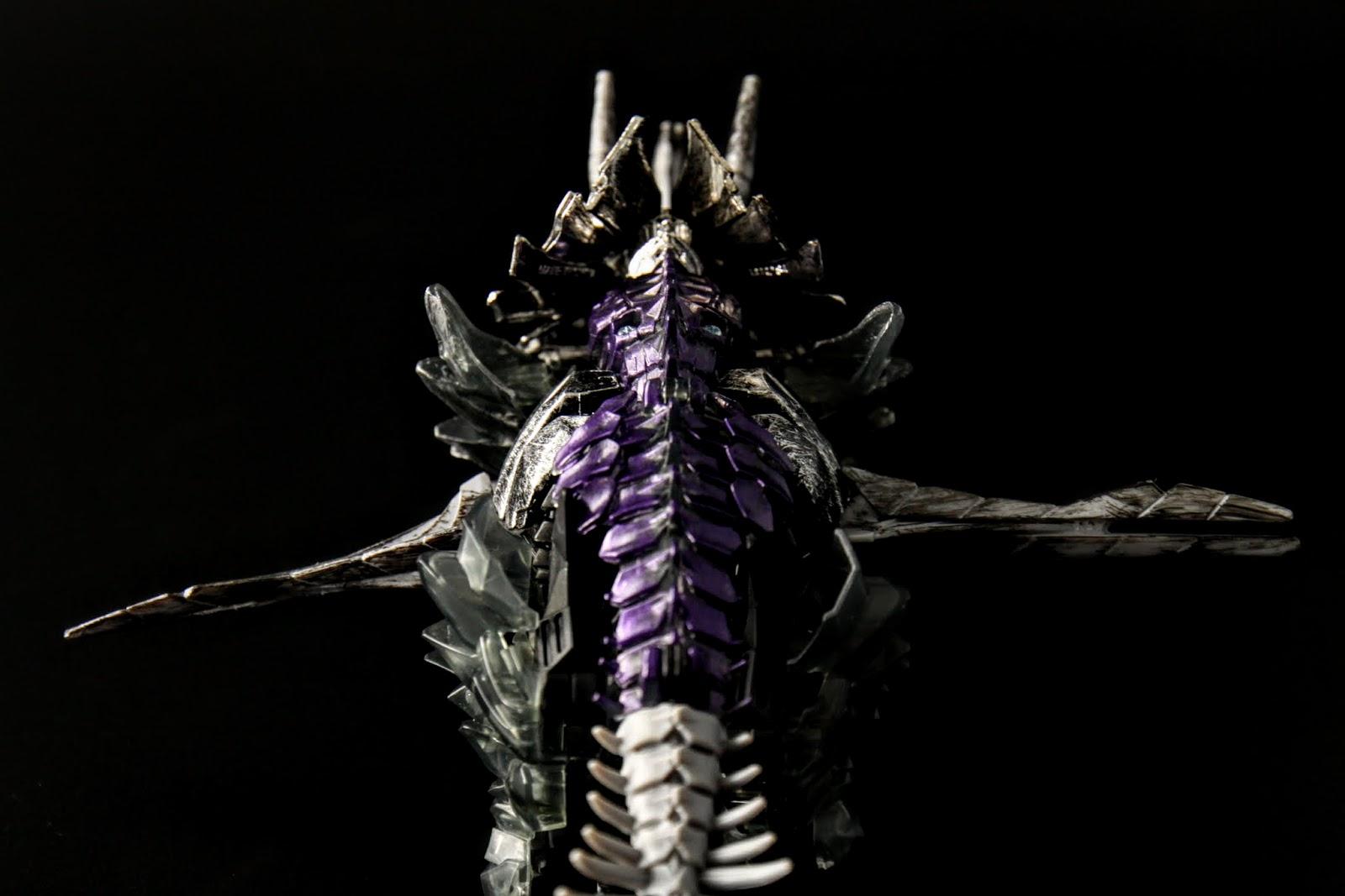 背部這條紫色真是漂亮