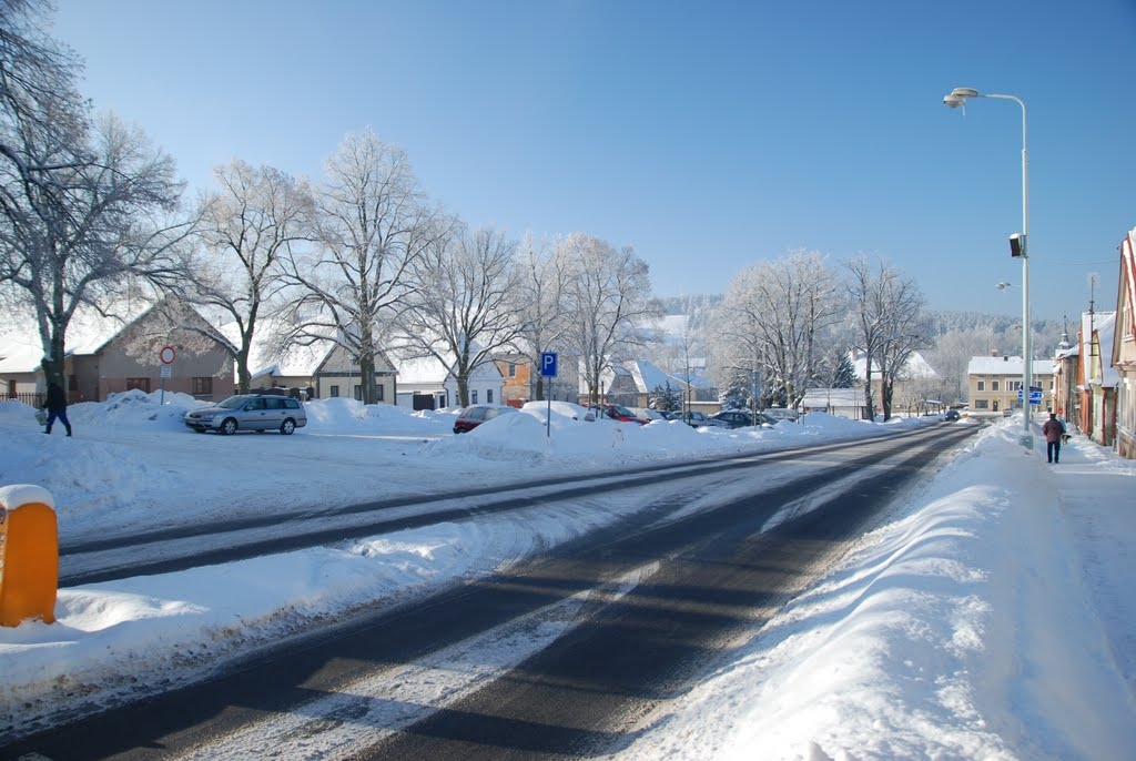 Ladovská zima 2010 - DSC_1533