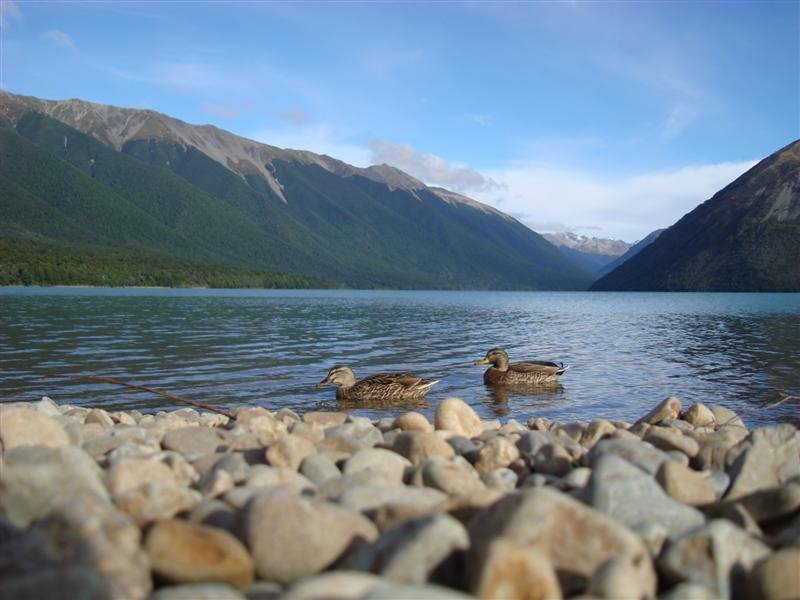The beautiful Lake Rotoiti, Nelson Lakes National Park
