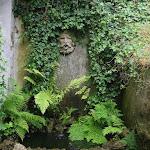 N Hoffmann Garden
