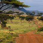 Masai Mara is beautiful after rains