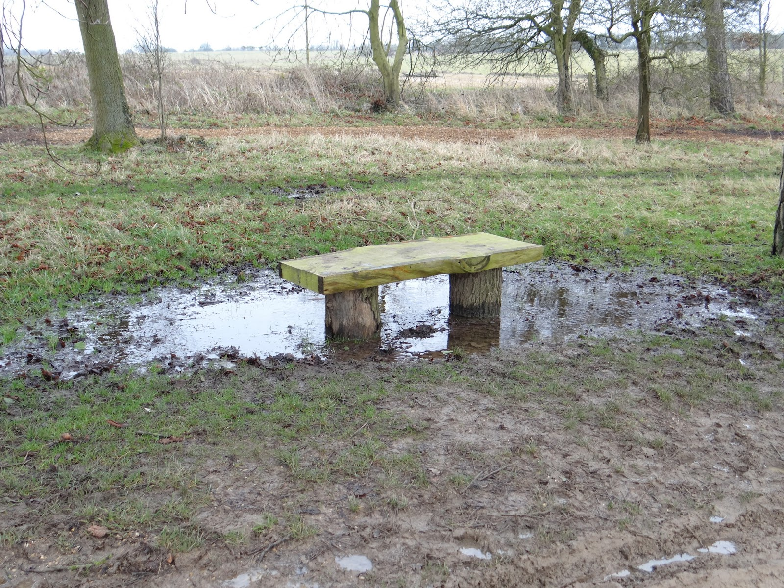 A Soggy Seat