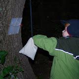 Září - dub lakomec schovává žaludy