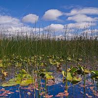 20110921_hosmer_lake_P9180446b