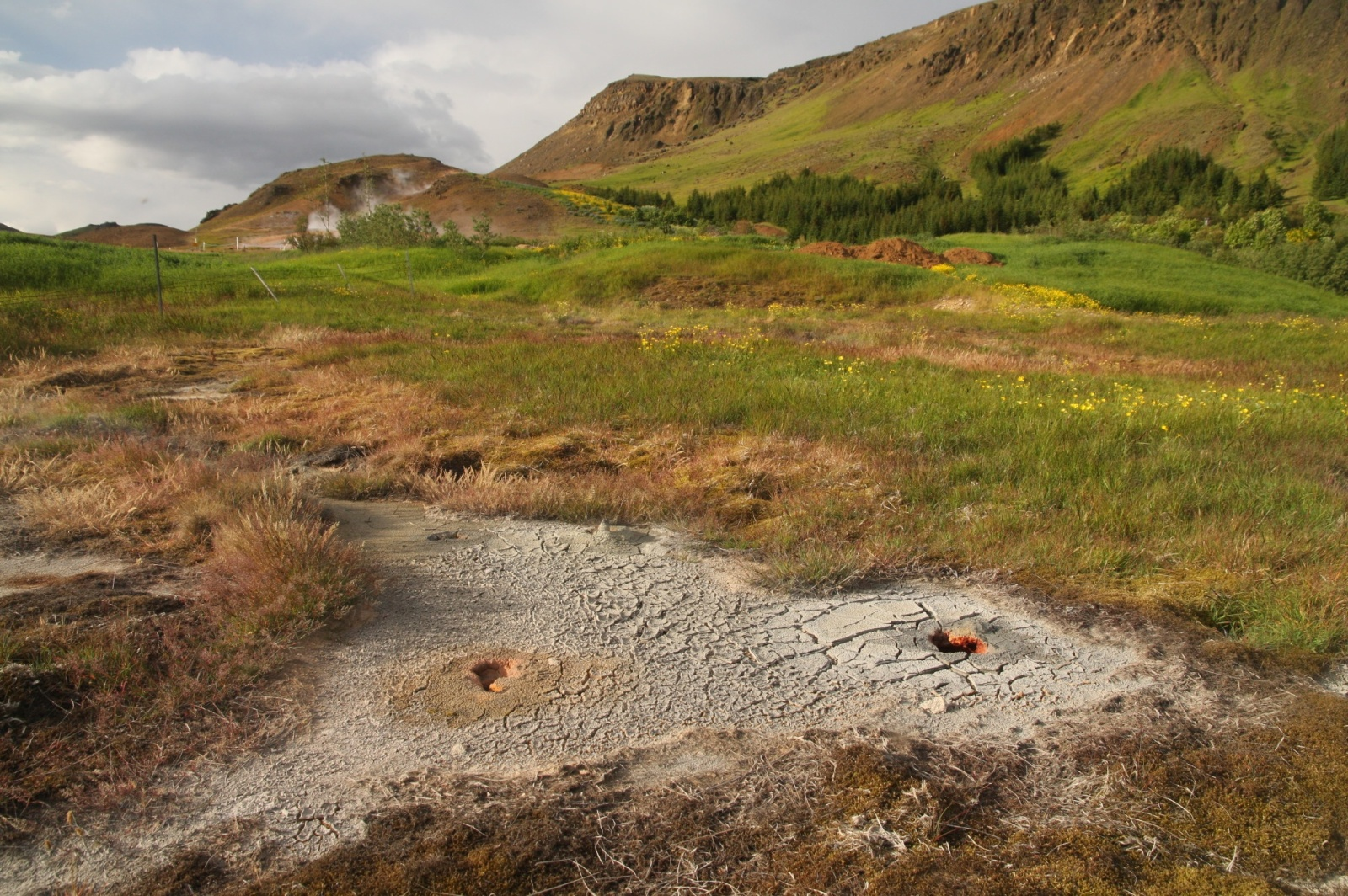 The people of Hveragerði living nearby are quite worried - new holes are opening every week