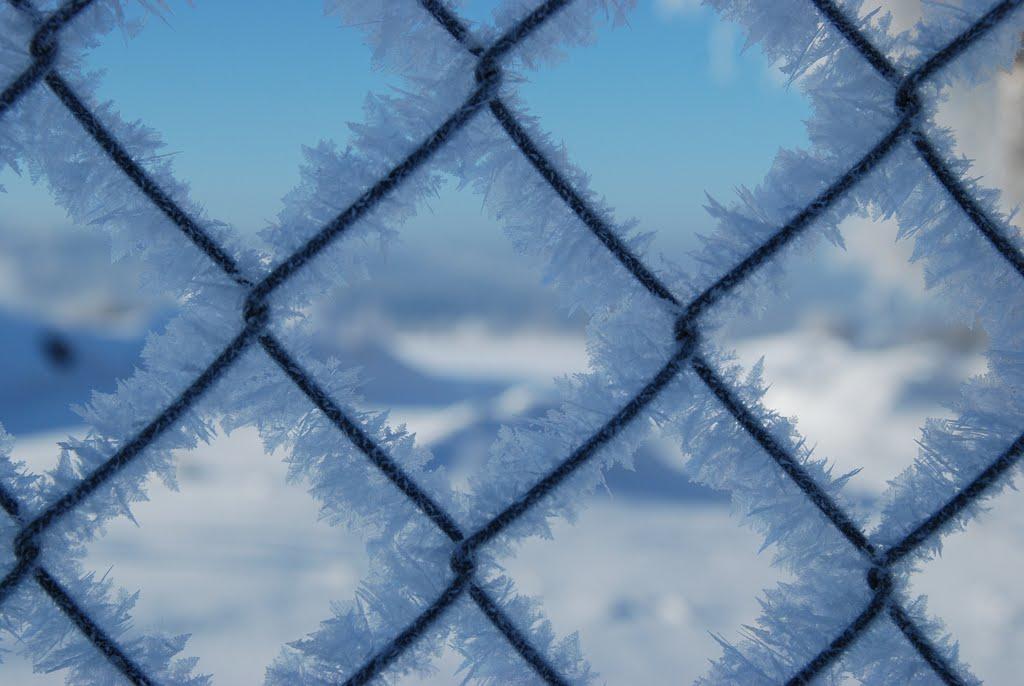 Ladovská zima 2010 - DSC_1594